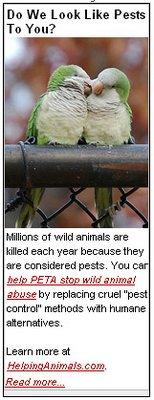 BrooklynParrots.com Wins PETA Ad Contest