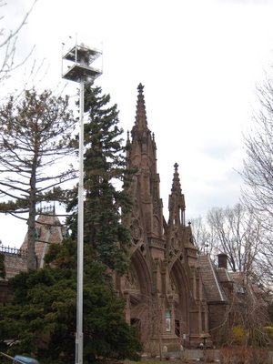 One of two artificial nest platforms erected at Green-Wood Cemetery for use by Monk Parakeets during renovation work of main gate.