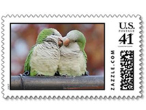 Wild Quaker Parrot I Love You Stamp