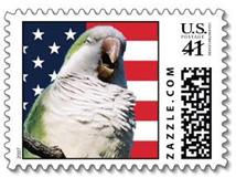 Quaker Parrot Patriotic Stamp