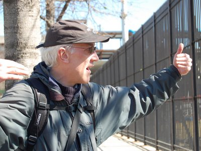 Steve Baldwin runs free Wild Parrot Safaris in Brooklyn each month.