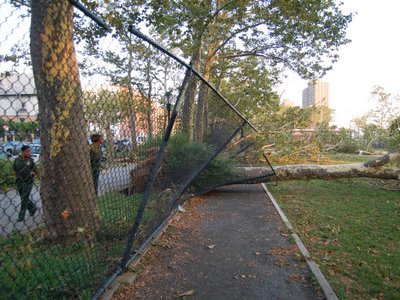 Damage from Bay Ridge Tornado, Brooklyn, NY, August 9, 2007