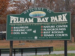 Pelham Bay Park boasts all kinds of wildlife, including wild parrots